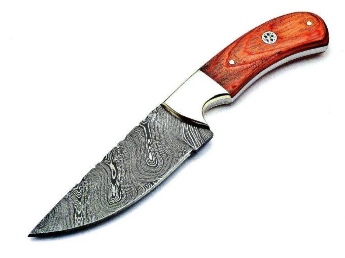 Pakka-WWood-Handle-Hunting-Skinner-Knife